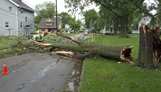 Storm damage 5-30-15-College Ave