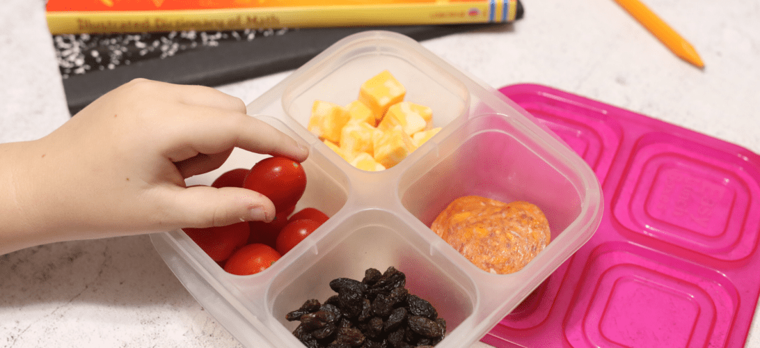 No one tells you the hardest part of homeschooling is feeding everyone all day long. Use these easy homeschool snack ideas to make your life easier!