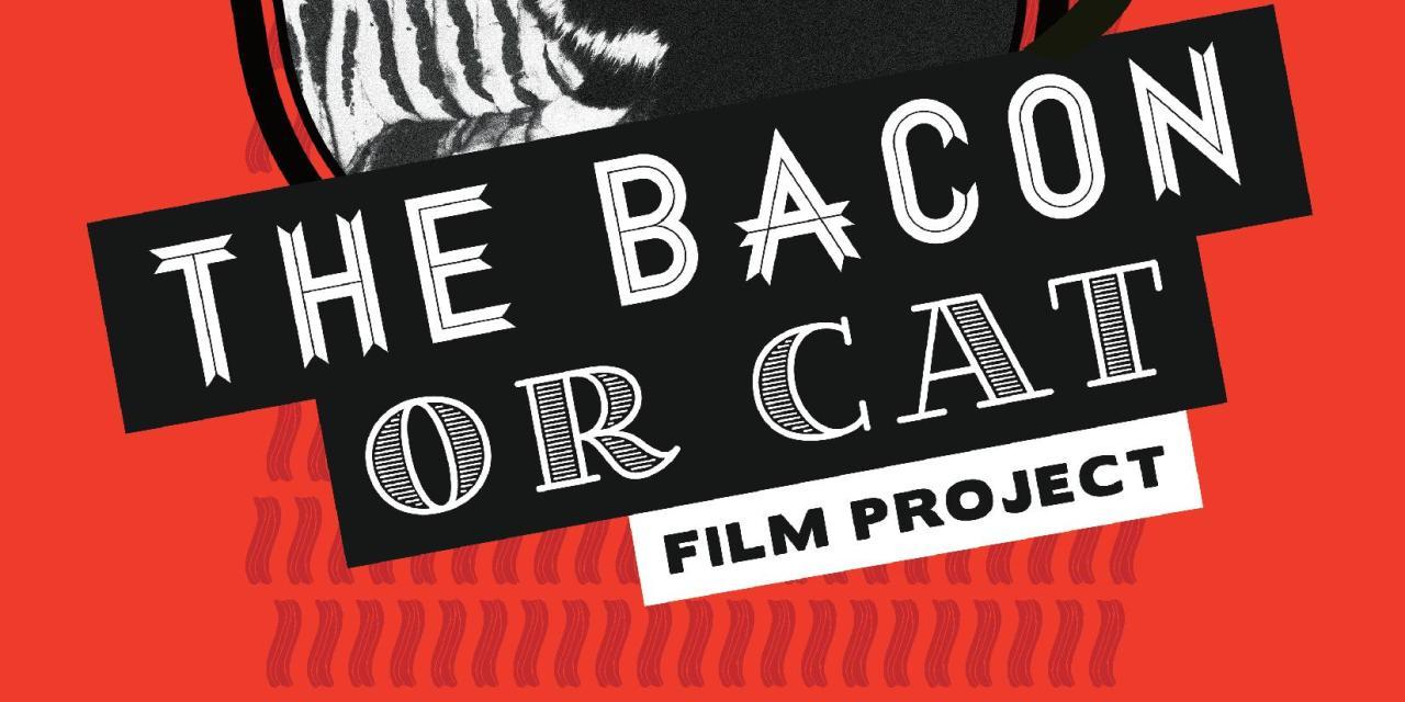 Bay Street Film Festival Contest