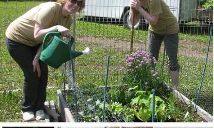 The United Way's 4th Annual Day of Caring