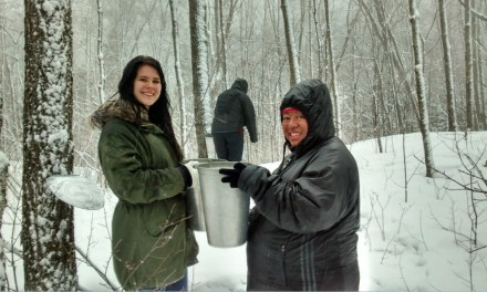 The Resurgence of the Sugar Bush