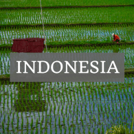 Indonesia Archives • The Wanderful Me