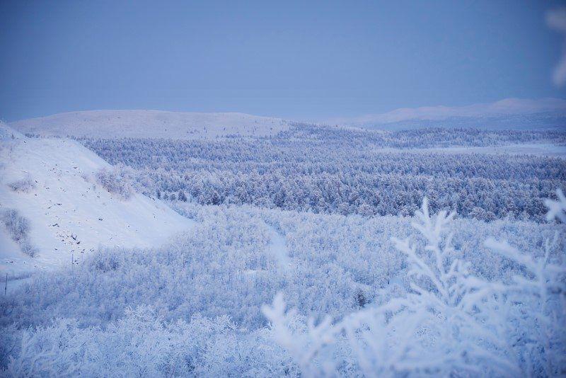Winter Wonderland in Kiruna, Sweden by The Wandering Lens