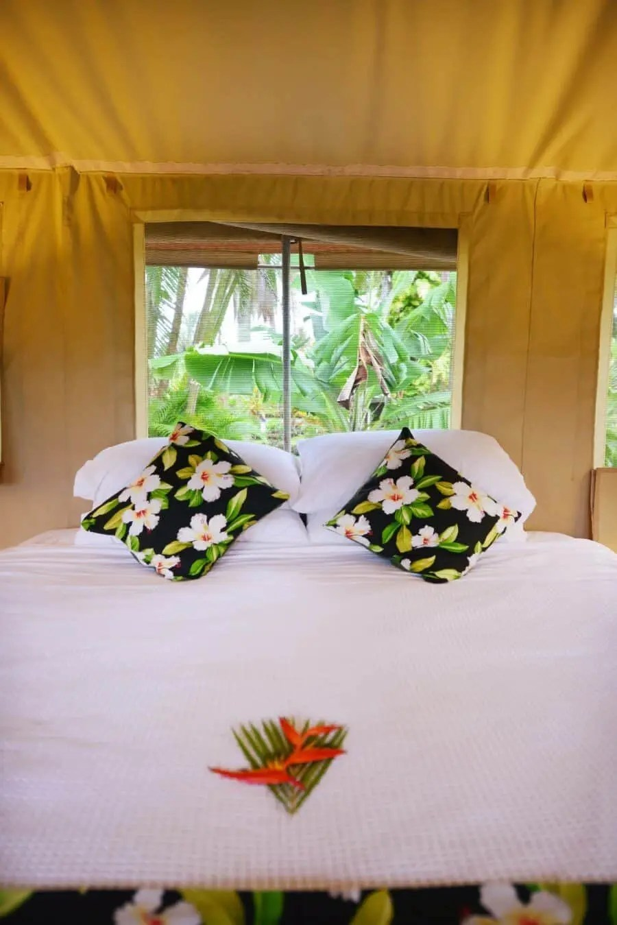 ikurangi-eco-retreat-rarotonga-cook-islands-20
