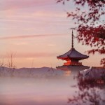 Japan Photo Tour November 2018 The Wandering Lens Travel Photography Guides