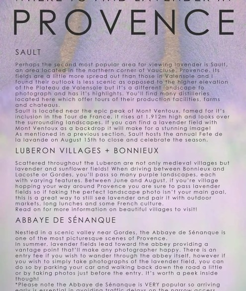 Provence Lavender Field Guide and Ebook