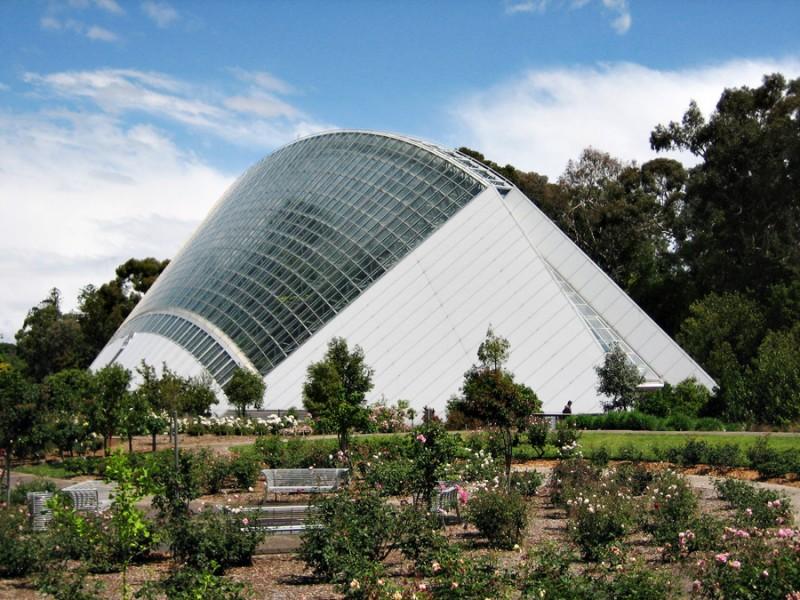 Adelaide-botanical-garden2-800x600