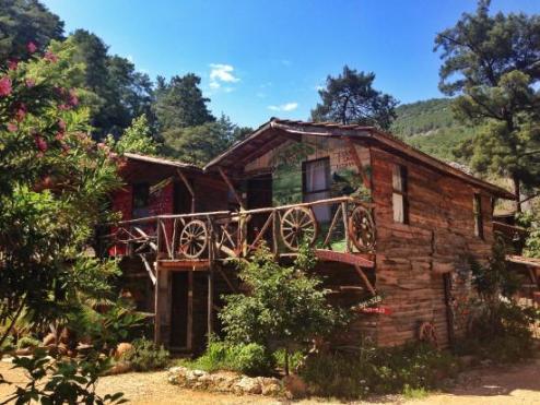 kadir-s-tree-house