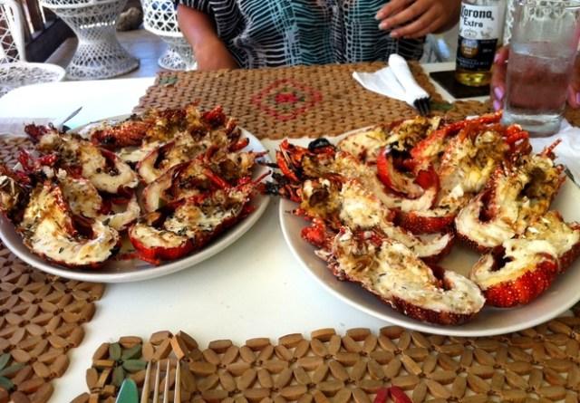 On Da Rocks, Crayfish