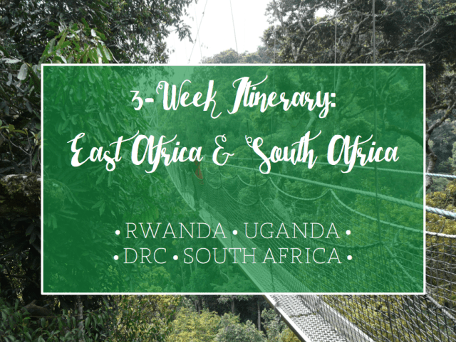 Nyungwe Forest National Park, Three Weeks in Africa: East and South Africa Itinerary