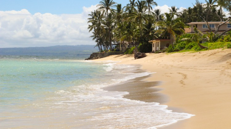 Travel Guide: North Shore, Oahu