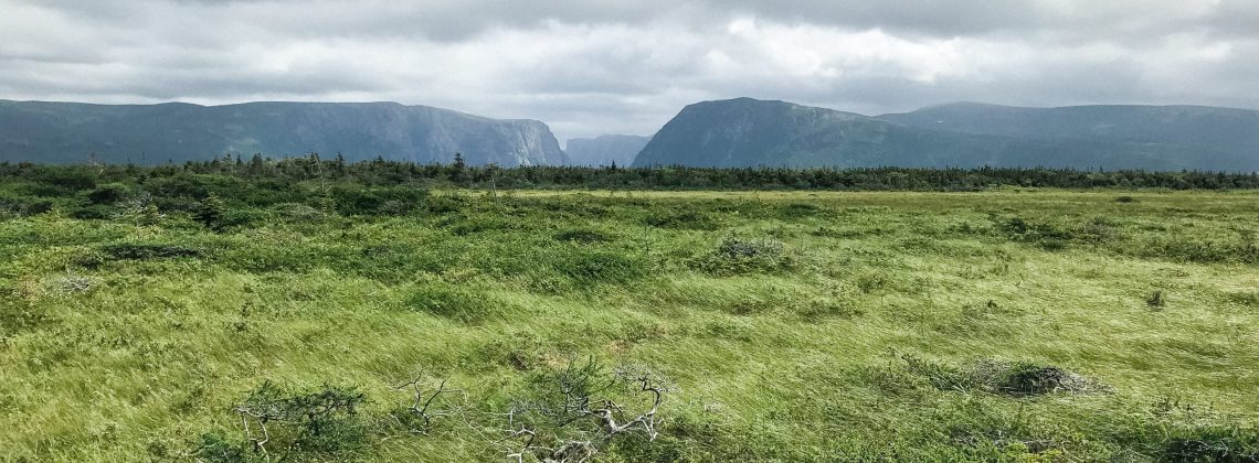 Gros Morne Travel Guide