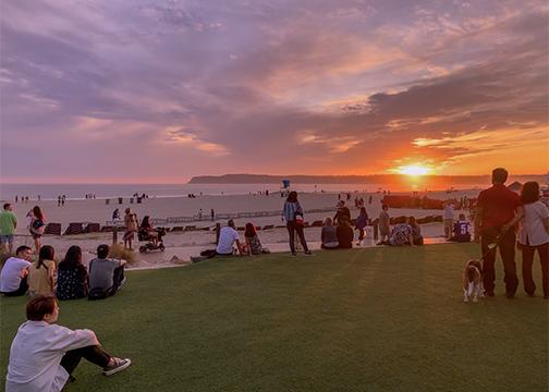North Paseo Lawn Sunset The Del Coronado Island