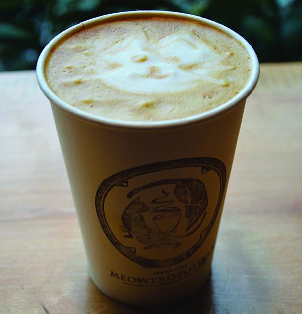 """A """"Catppuccino"""" from Meowtropolitan."""