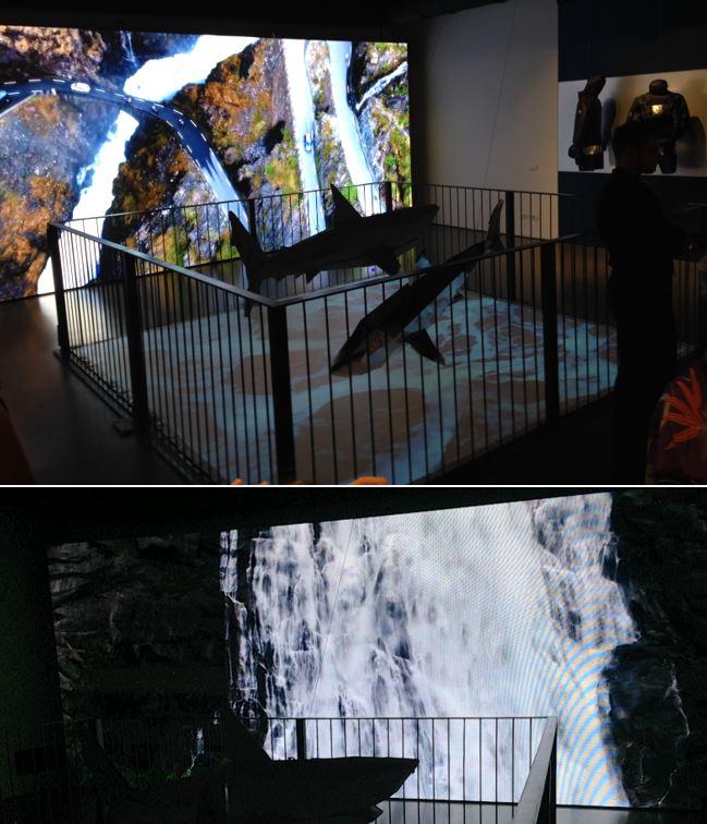 Lo showroom di Paul&Shark a Milano riflette il mood avventuroso delle collezioni.