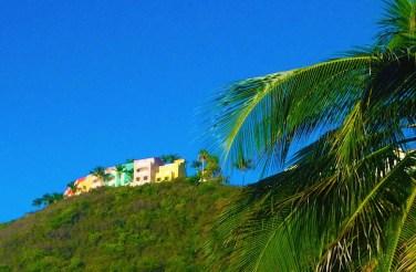 Marina Hill