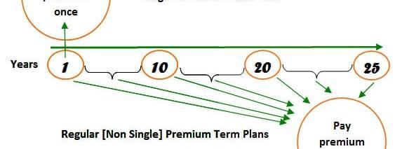 Do single premium term insurance plans make sense ?