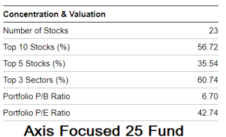 concentrated portfolio equity mutual fund