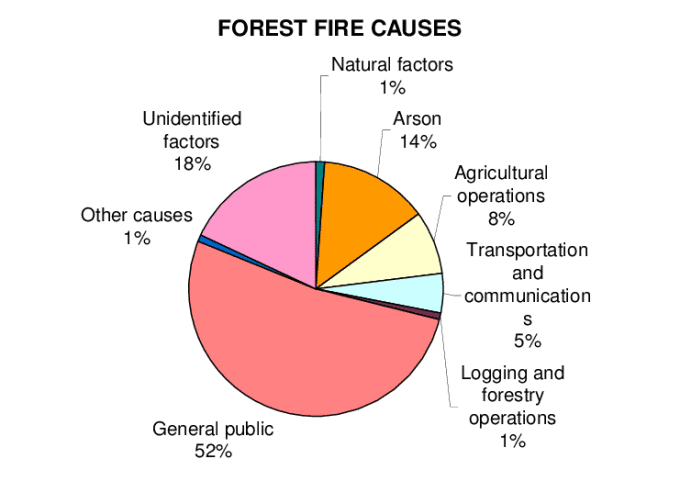 causes of forest fire