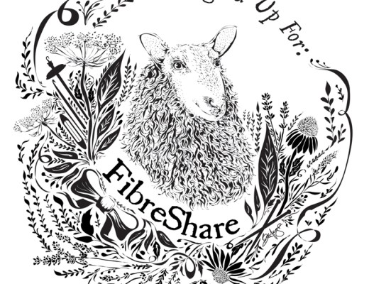 FibreShare, a really fun way to meet & share with others who love fiber!