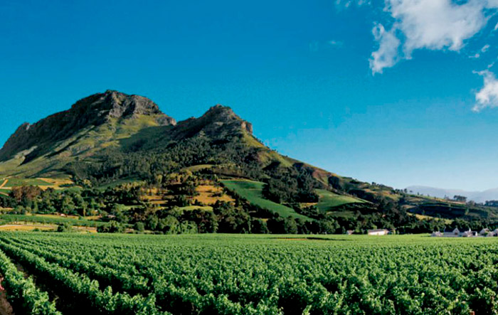 Wine Routes, South Africa. Honeymoon itimerary for South Africa. www.theweddingnotebook.com
