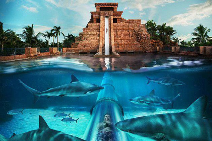 20 Honeymoon Ideas – The Atlantis, Paradise Island, The Bahamas. www.theweddingnotebook.com