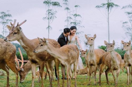Photography by Zahkri of Sheerss. www.theweddingnotebook.com