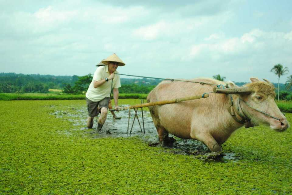 bali-honeymoon_tabanan-farmer-4