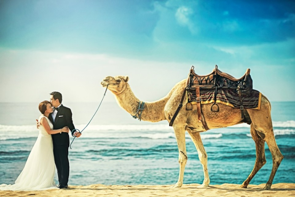 wedding photographers malaysia - Edwin Tan Photography - HoneyBrides
