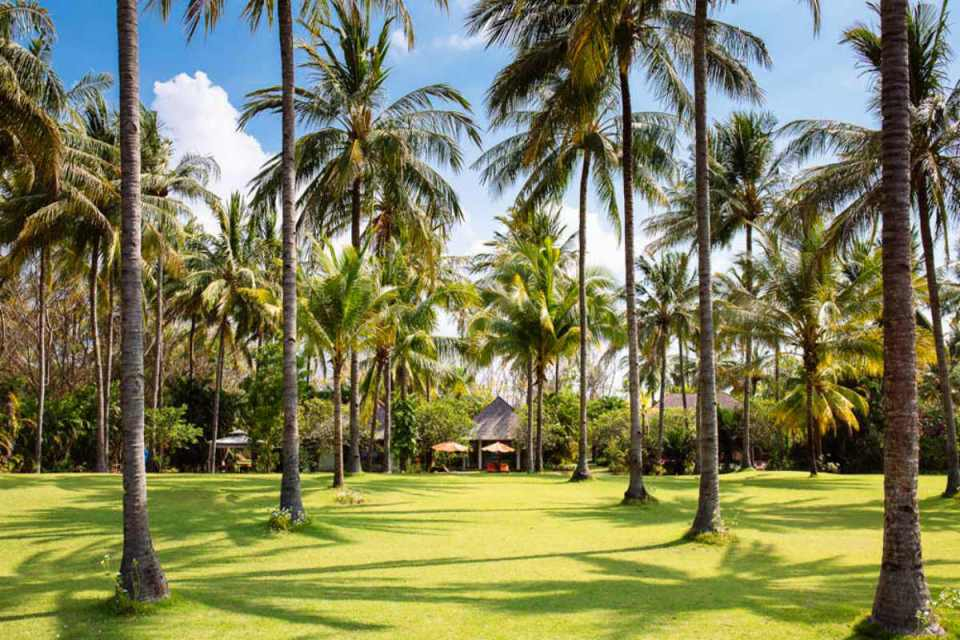 Lombok Hotels - Anandita2 - TheAnandita