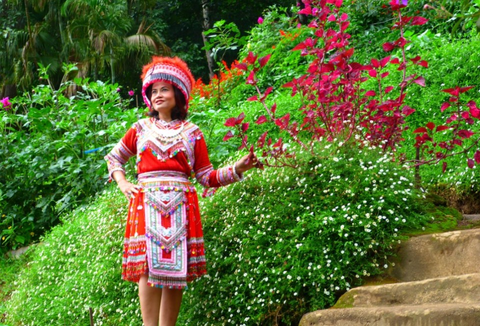 Chiang Mai Honeymoon - Doi Pui Hmong Village - Geezers Abroad