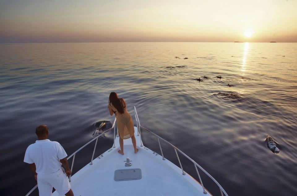 Soneva Fushi Honeymoon dolphin cruise