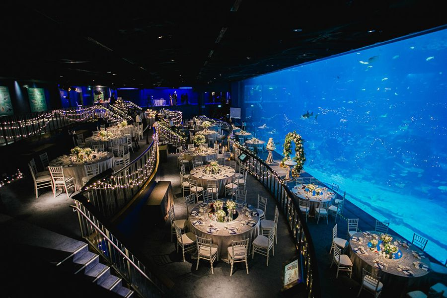 S.E.A. Aquarium Wedding Venue