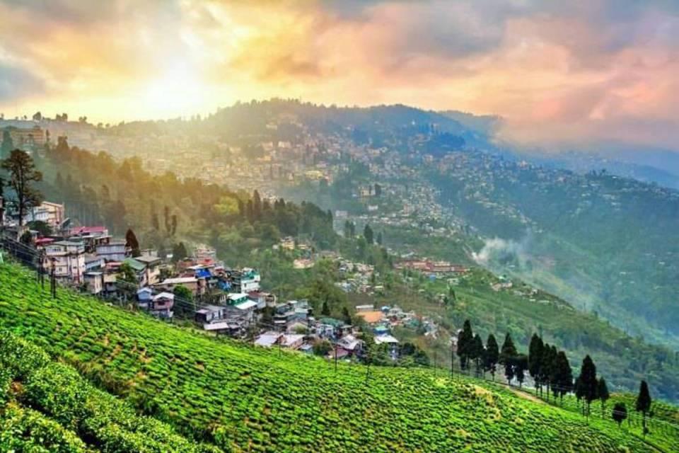 india honeymoon Darjeeling