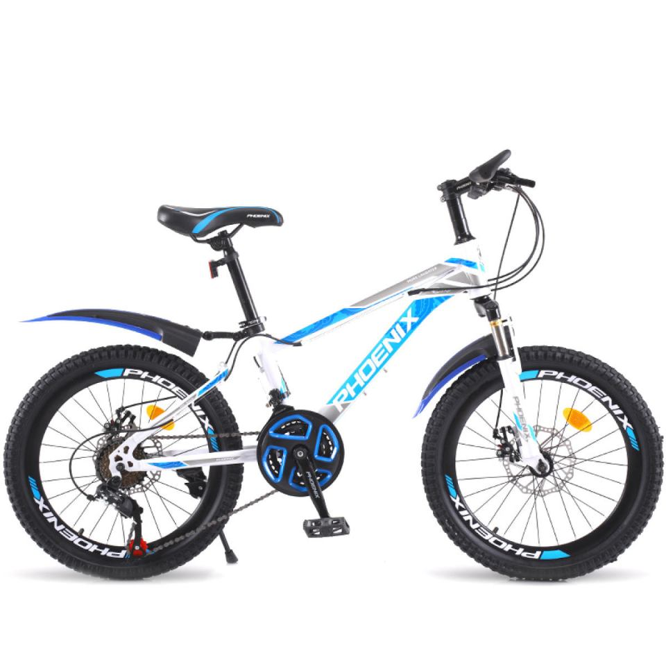 21-speed Phoenix Youth Bicycle