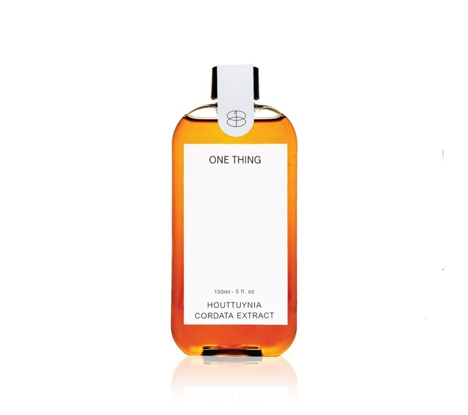 ONE THING Houttuynia Cordata Extract Toner