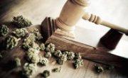 Which States are Eyeing Cannabis Decriminalization in 2016?