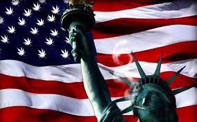 New York launches medical marijuana program, among the nation's strictest
