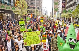 Cannabis Amnesty Campaign Joins Global Marijuana March