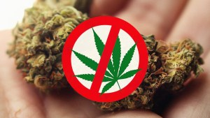 Want cannabis stores banned in your town? Read this first
