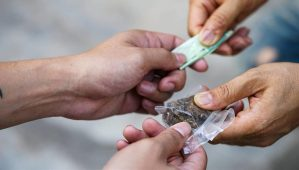 Black Market Pot Dealers Not Fazed by Legal Competition