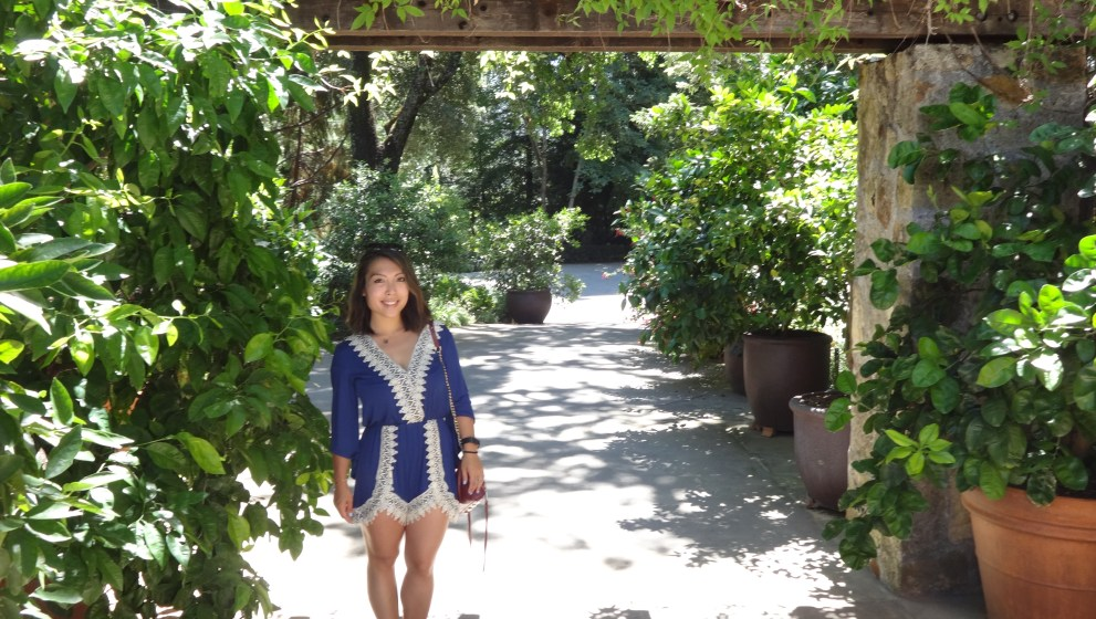 Napa: 12 Wineries in One Day