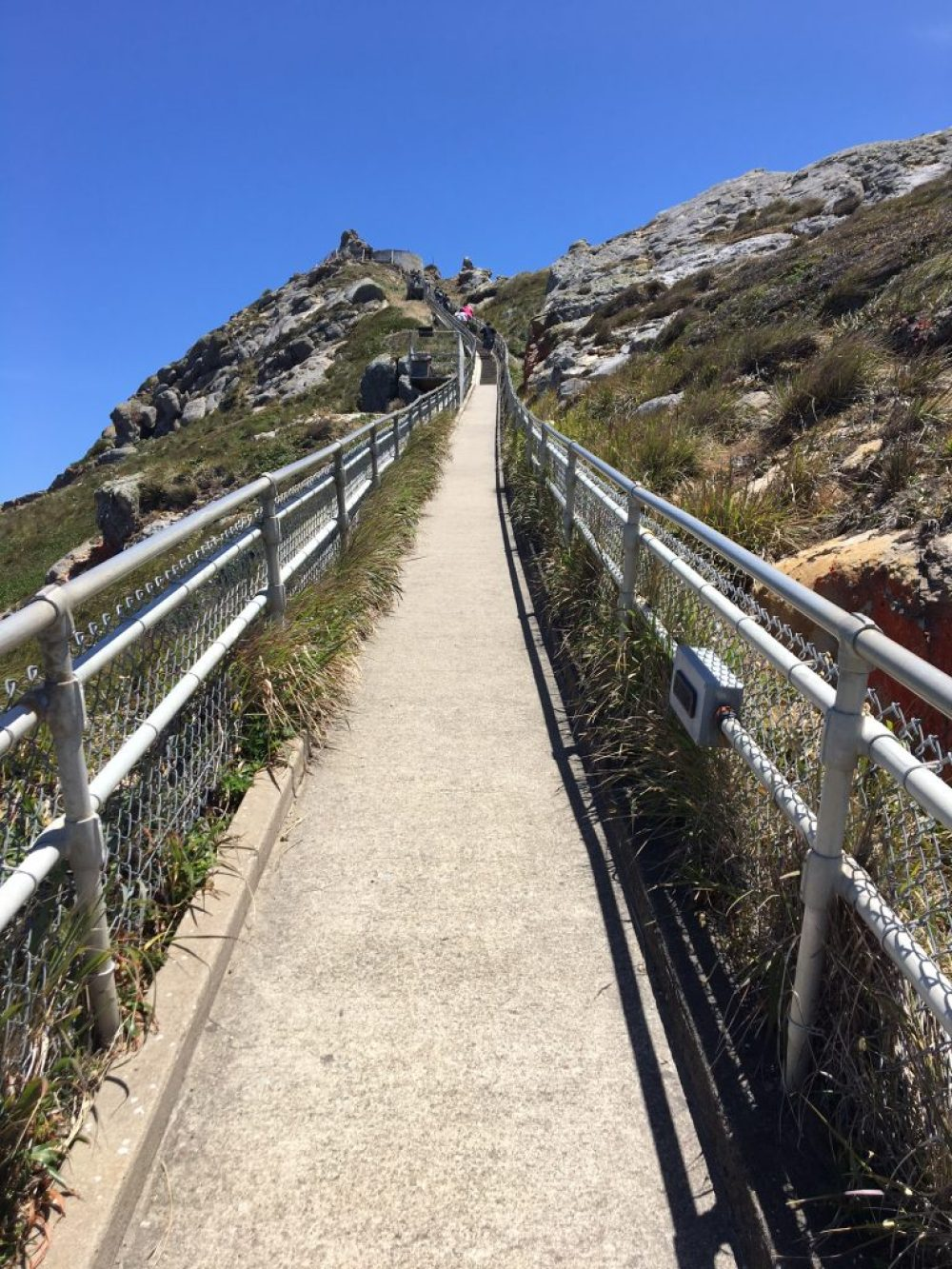 The Hike Back from Point Reyes Lighthouse