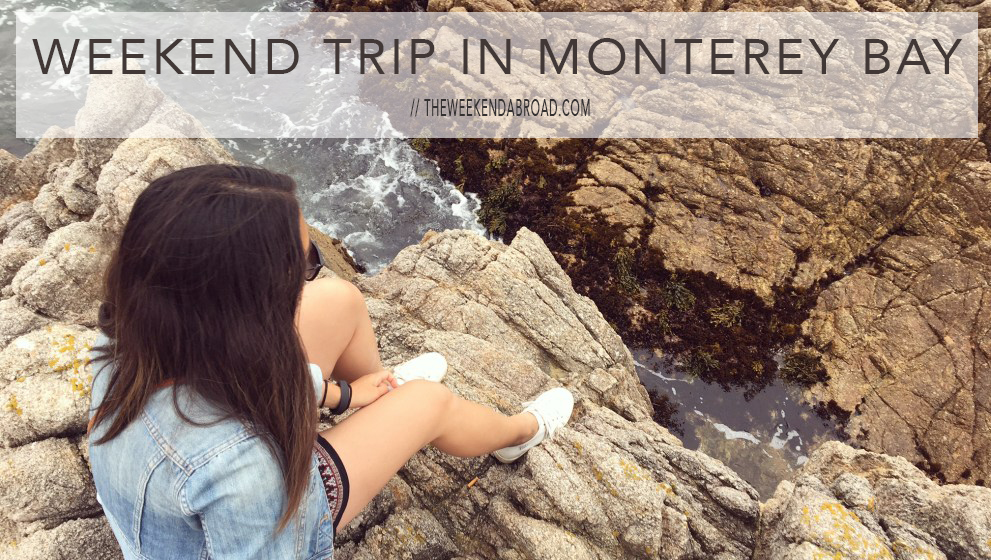 Weekend Trip: Things to do in Monterey Bay