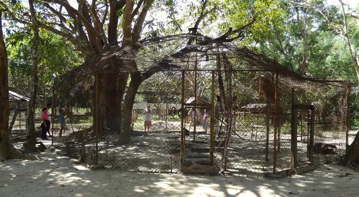 Calauit Island - enclosures