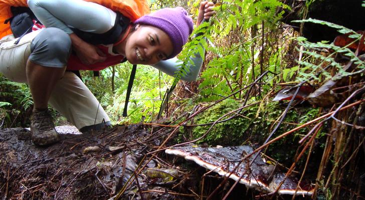 Mt Apo Trek - wild mushrooms
