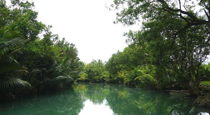 Tabuelan - Batawang River
