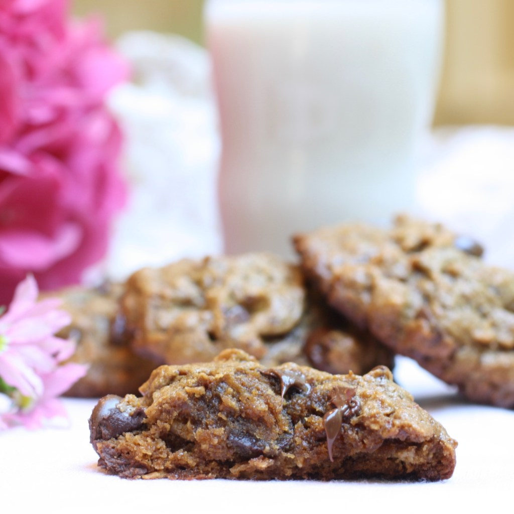 Oatmeal, peanut butter, chocolate chip cookie