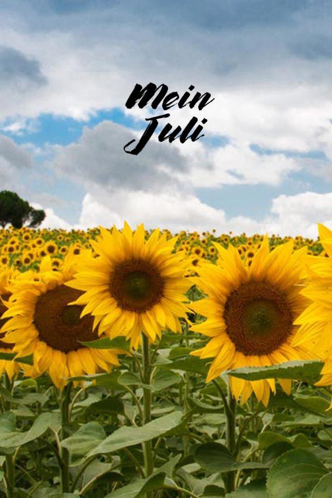 Mein Juli -Monatsrückblick | Mi-Mini