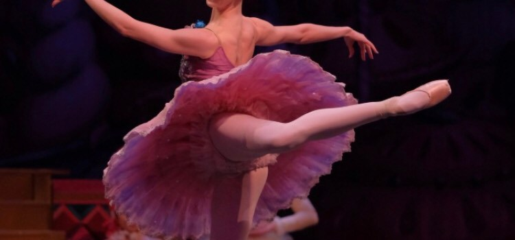 Alexandra Hoffman – Healthy Dancer Feature